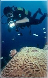 Scuba in Martinique 2001, Photo Credit : Laurent Kbaier